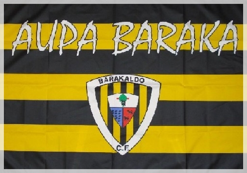 camisetasbandera